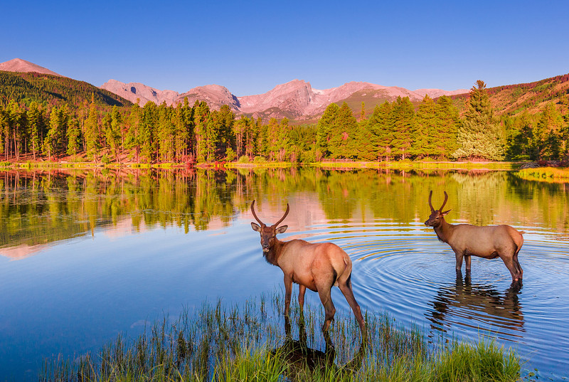 10 Most Popular National Parks in United States