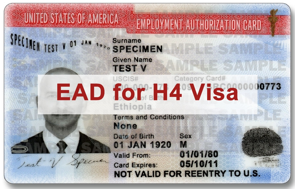 Everything You Need to Know about H4 Visa EAD